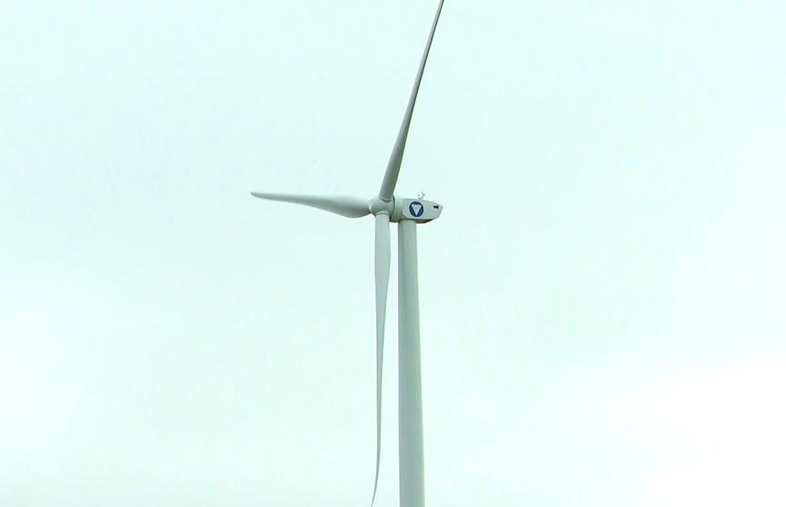 16 сентября – Всемирный день защиты озонового слоя. Что делается в Беларуси и в мире для сохранения экологии?