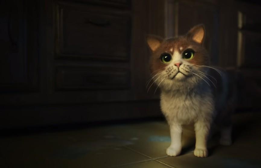 Вышел первый хоррор-фильм для котов
