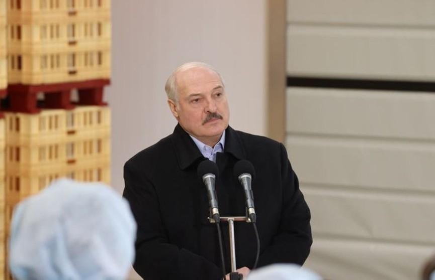 Лукашенко о героизации нацизма: Мы этого «добра» хлебнули