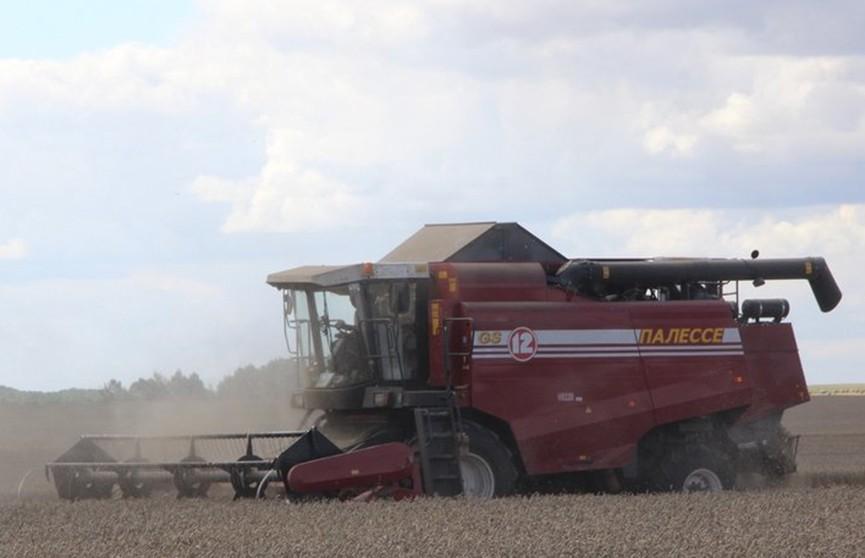 Барановичский район собрал 100 тысяч тонн зерна первым в Брестской области