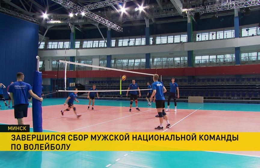 Белорусские волейболисты в апреле начнут подготовку к матчам Золотой лиги