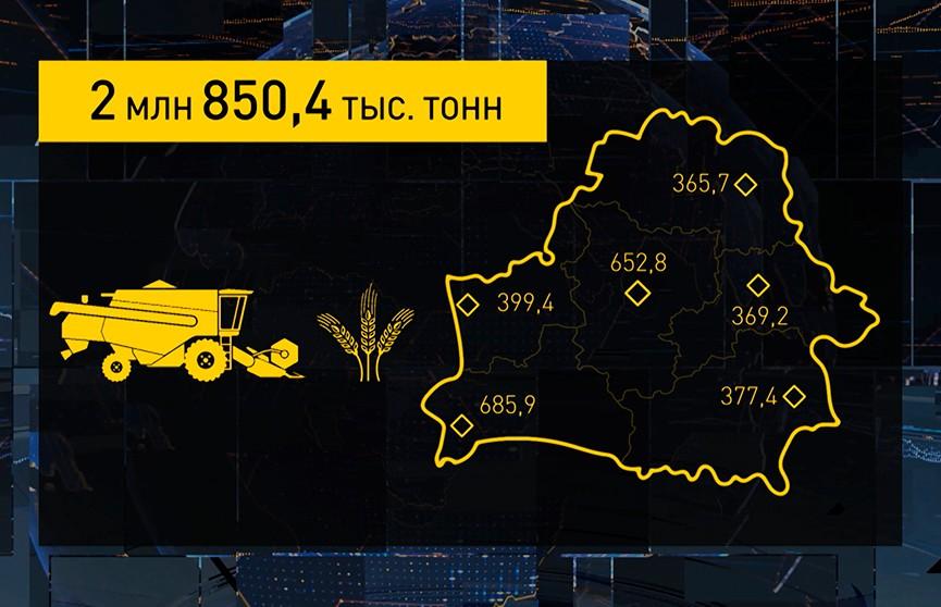 Урожай-2021: убрано больше 40% площадей