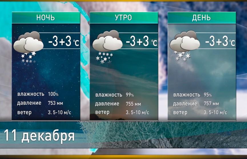 Прогноз погоды на 11 декабря: оттепель и гололедица