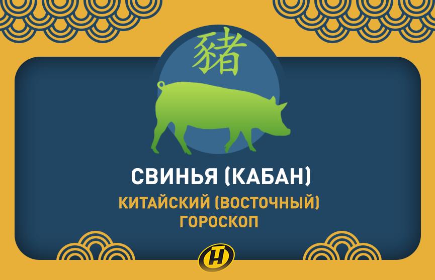 Свинья: Китайский (Восточный) гороскоп, характеристика знака, совместимость