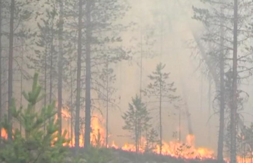 Лесные пожары в Швеции привели к эвакуации жителей и очередям на границе