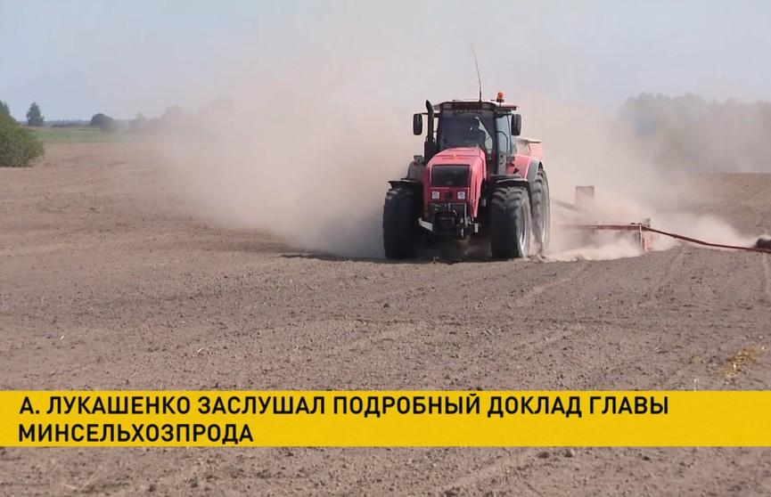 Лукашенко поручил аграриям в течение недели завершить сев озимых