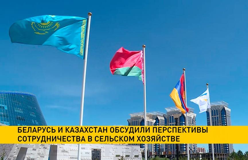 Беларусь и Казахстан обсудили перспективы сотрудничества в сельском хозяйстве