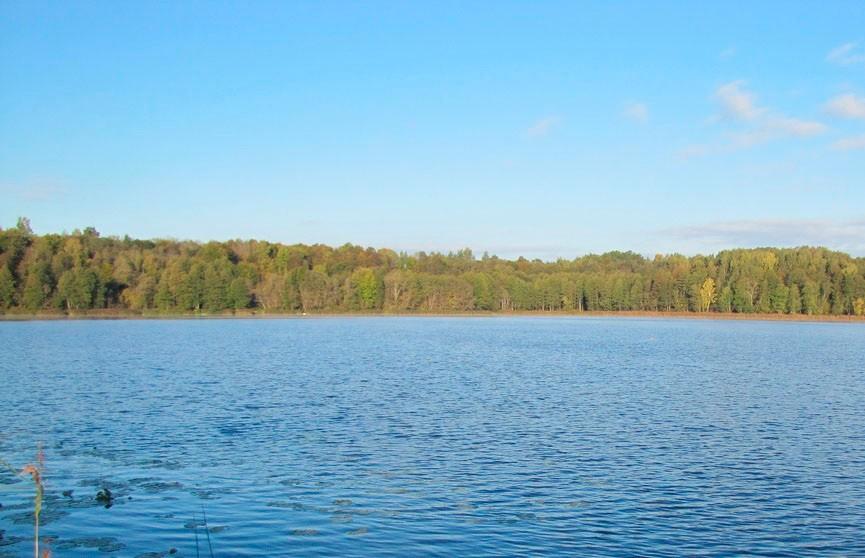 Двухлетний малыш утонул в озере Бешенковичского района