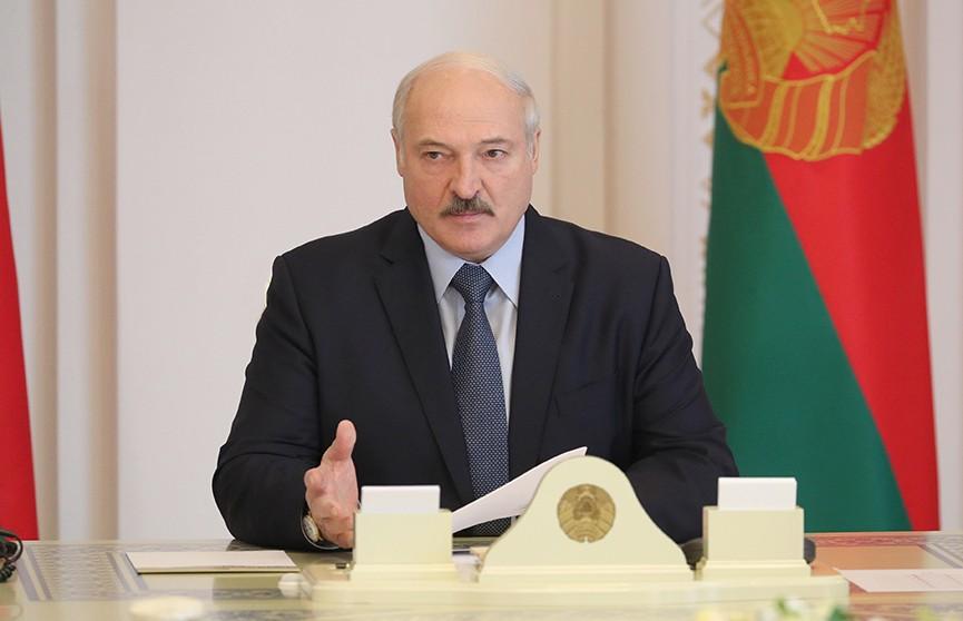 Лукашенко поддержал предложение о создании IT-вуза в Беларуси