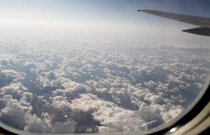 «Белавиа» продлила приостановку рейсов во все аэропорты России, кроме Домодедово
