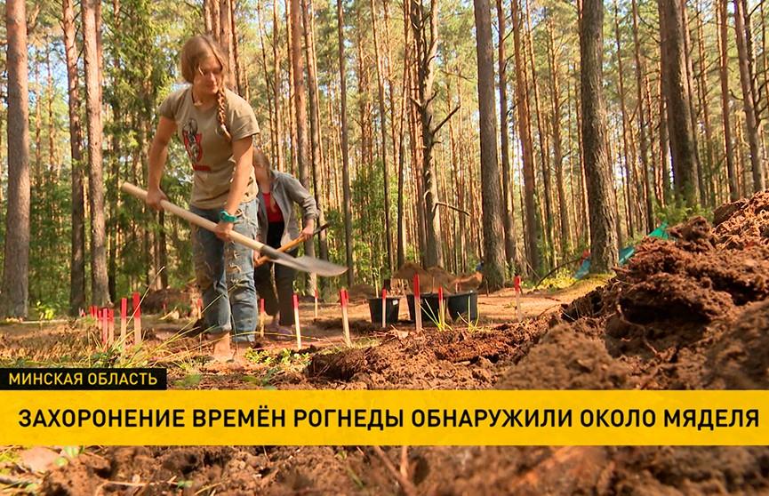 Археологи обнаружили грунтовый могильник кривичей под Мяделем