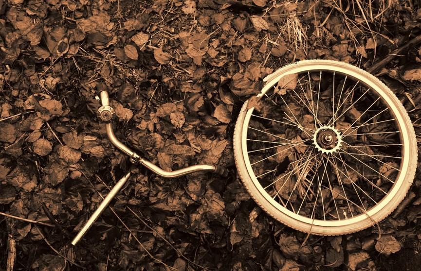 Кусок древесины проткнул упавшего велосипедиста насквозь