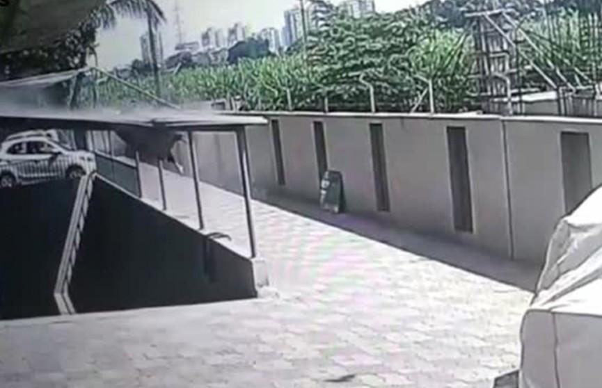 Девочка чудом выжила, пролетев 12 этажей (Видео)