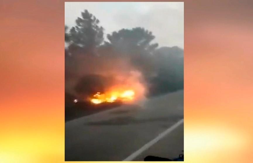 Греция снова полыхает: пламя вспыхнуло на полуострове Ситония