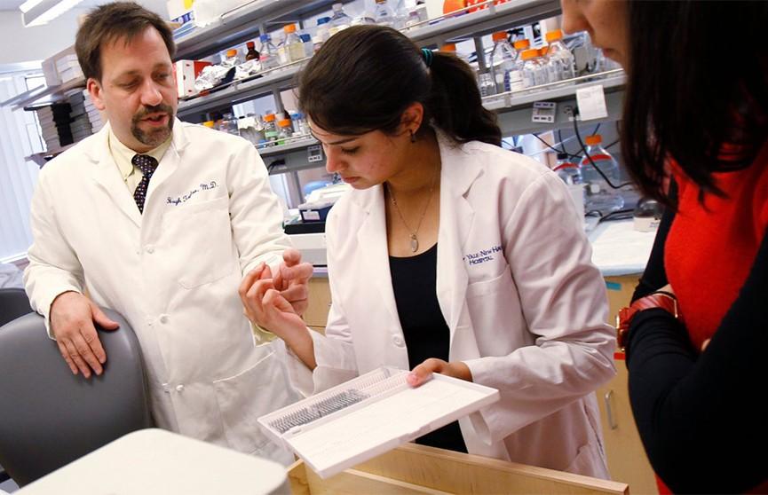 Американским нейробиологам впервые удалось частично оживить мозг мёртвого животного