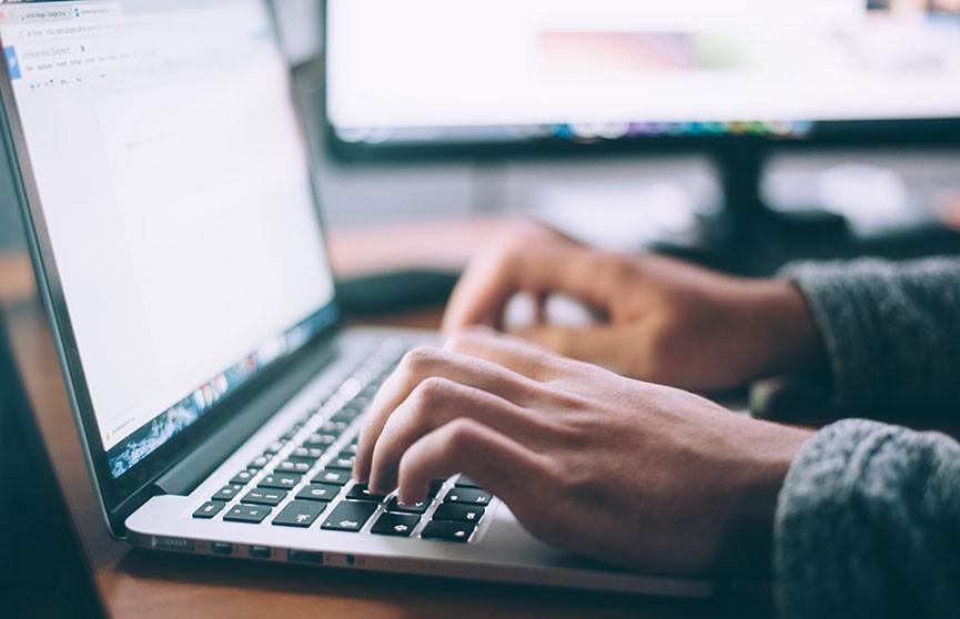 Более 2 млн белорусов приняли участие в переписи населения онлайн