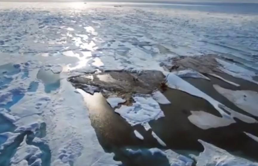 У берегов Гренландии случайно обнаружили новый остров. Он оказался самым северным участком суши на Земли
