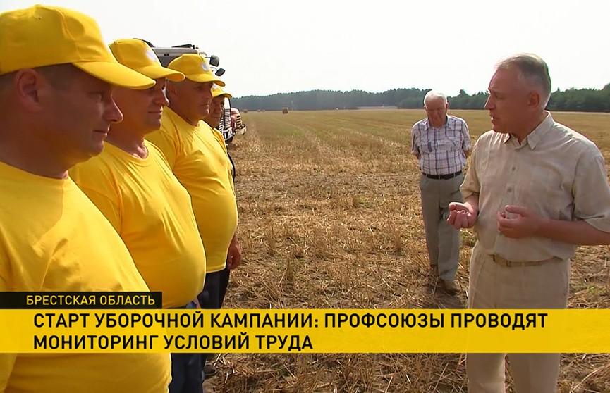 В Брестской области, несмотря на жару, началась массовая уборка зерновых