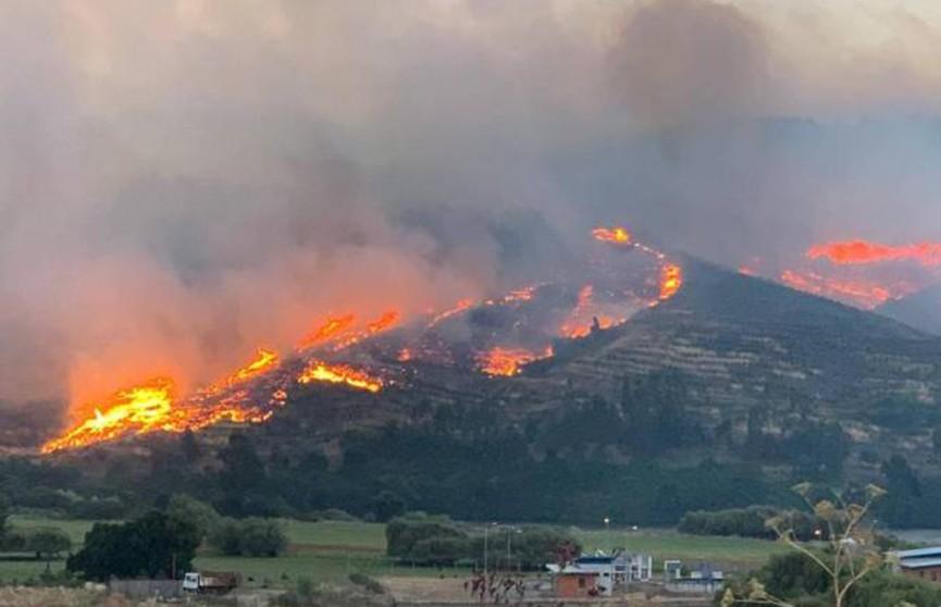 Лесные пожары в Чили: есть погибшие