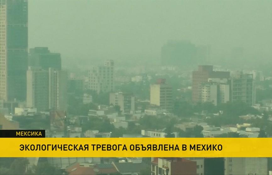 Дымовая завеса из-за природных пожаров окутала Мехико