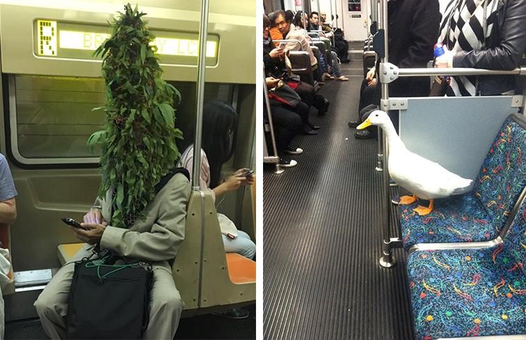 Ресторан, тату-салон, читальный зал. 10 фотографий, которые перевернут ваше представление о метро