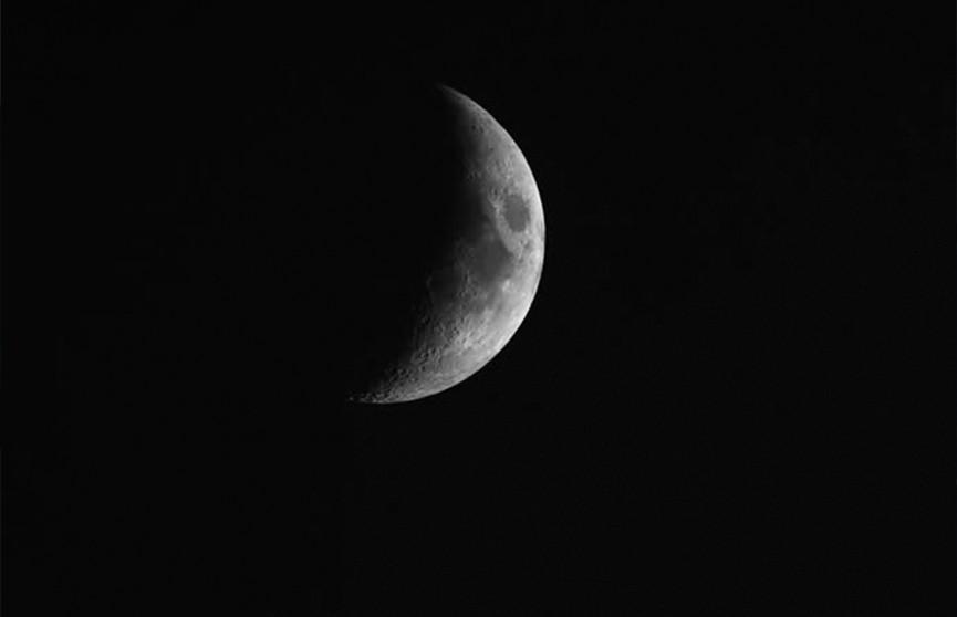 Лунный календарь с 10 по 16 февраля. Когда сеять семена на рассаду