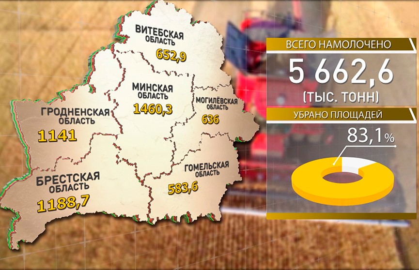 Уборочная-2019: собраны 83% урожая зерновых