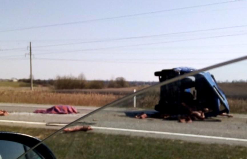 На дороге перевернулся грузовой микроавтобус: водителя и пассажира выбросило на проезжую часть