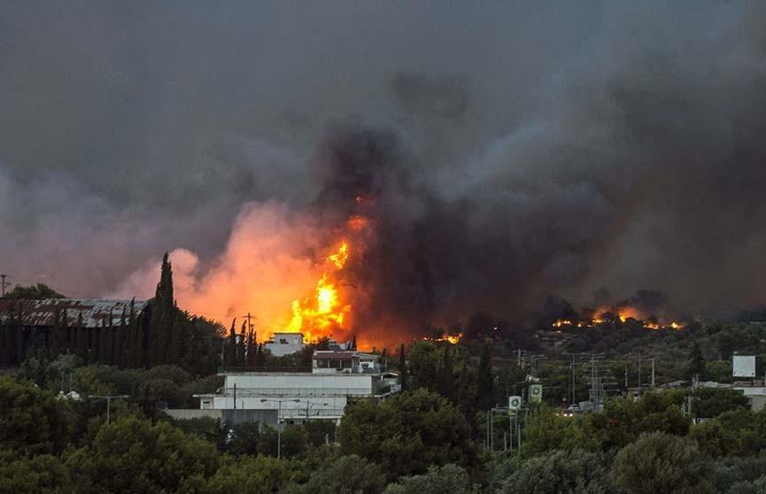 Европейский союз объявил траур по погибшим из-за лесных пожаров в Греции