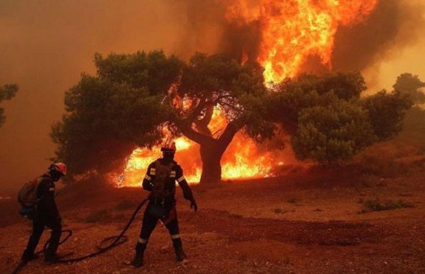 Более 16 часов тушат пожар на острове Эвбея в Греции