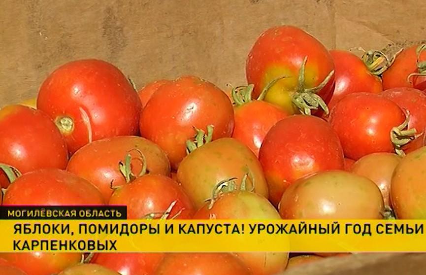 «Это хобби, работа и деньги». Фермер рассказал об особенностях этого бизнеса в Беларуси
