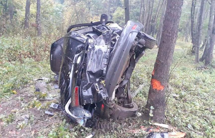 Ford вылетел в кювет под Минском: пострадал 6-летний ребенок