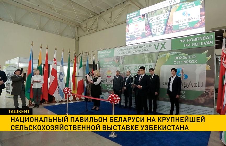 Беларусь принимает участие в крупнейшей сельскохозяйственной выставке Узбекистана
