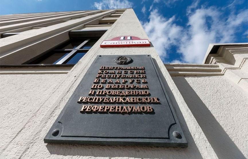 Ермошина: в Гомельской области выборы состоялись