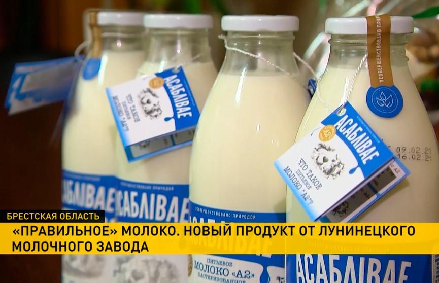 Молоко А2: инновационный продукт создали на Лунинецком молочном заводе