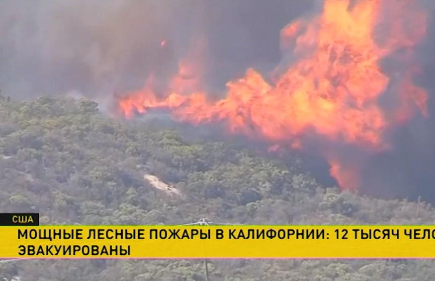 Двое детей погибли в пожаре в Минском районе