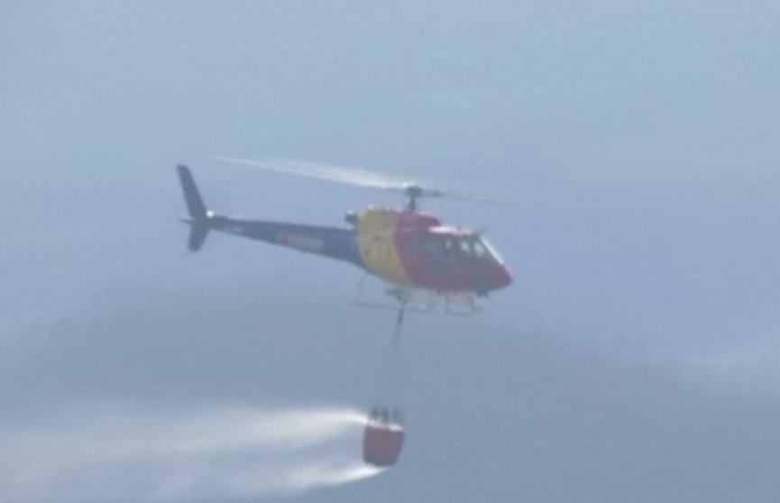 Аномальная жара в Португалии привела к лесным пожарам