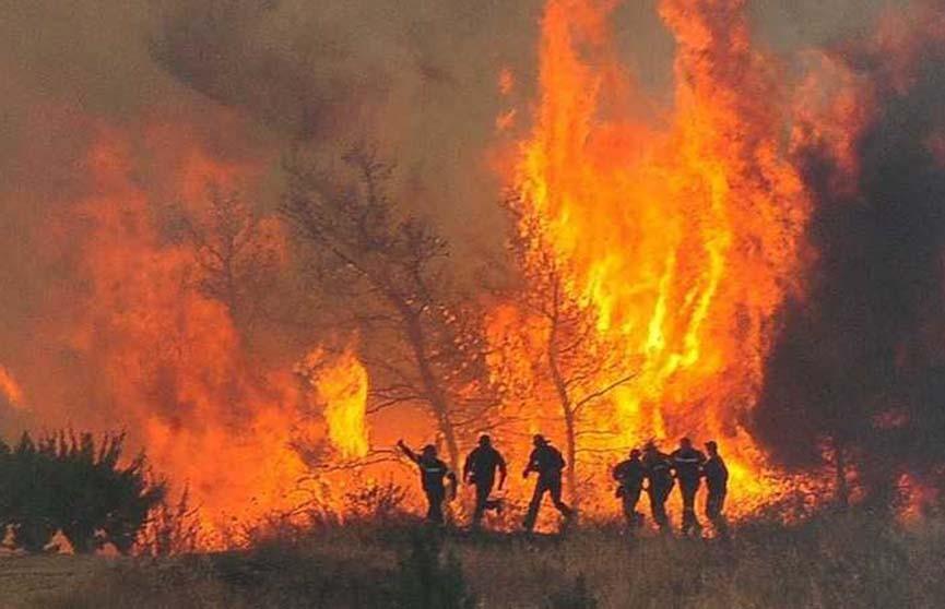 Александр Лукашенко выразил соболезнования президенту Греции в связи с гибелью людей из-за лесных пожаров