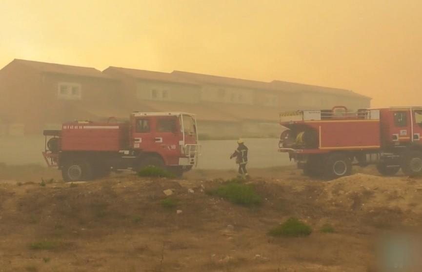Крупный пожар на юге Франции: уничтожены 500 гектаров леса