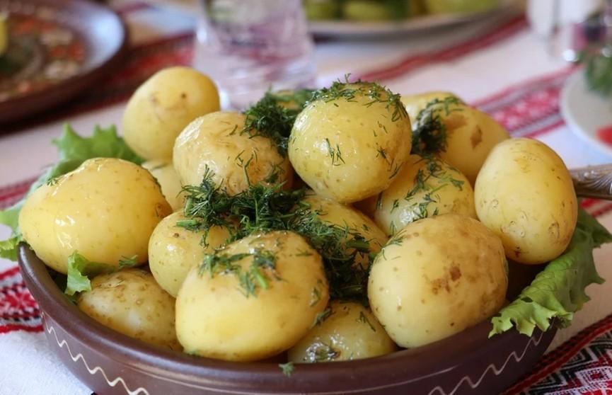 Названа главная ошибка при приготовлении картофеля – это может привести к отравлению!