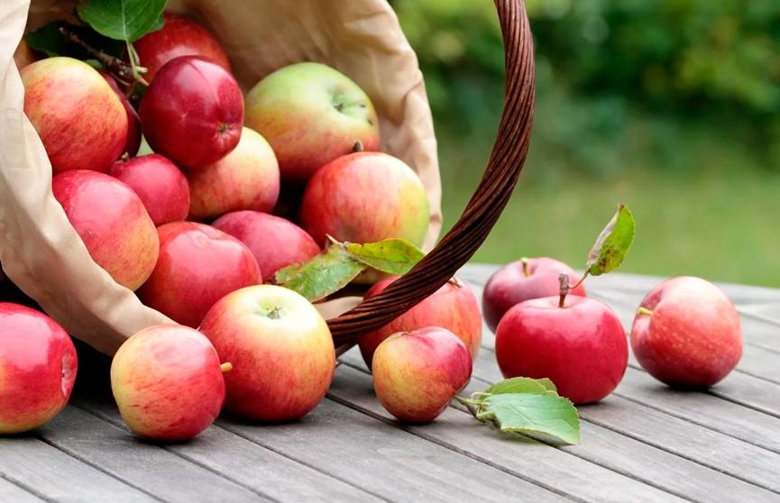 Яблочный Спас: православные верующие отмечают Преображение Господне