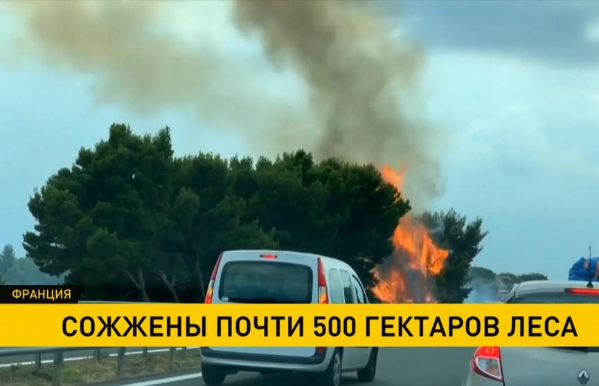 Экстремальная жара в Европе не прошла бесследно: во Франции вспыхнули лесные пожары