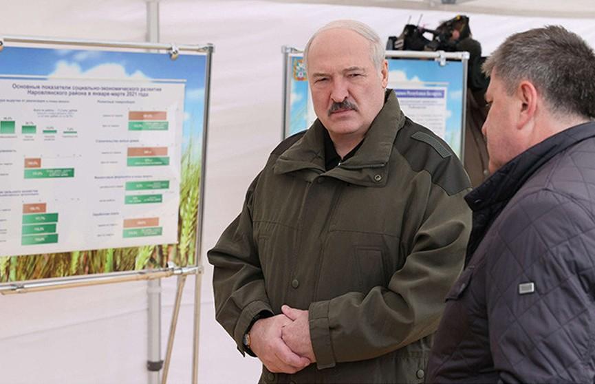 Лукашенко о развитии чернобыльских территорий: надо понимать, где будут жить люди