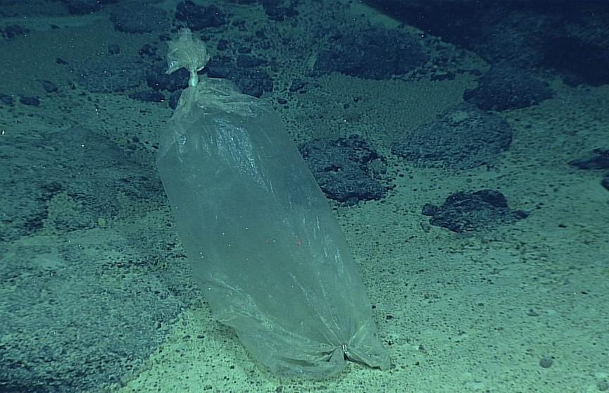 Американский исследователь обнаружил пластиковый пакет и конфетные фантики на дне Марианской впадины