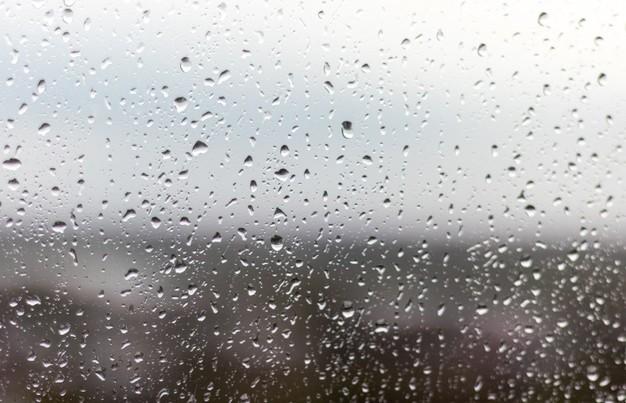 Дождь и мокрый снег ожидаются в Беларуси 3 апреля