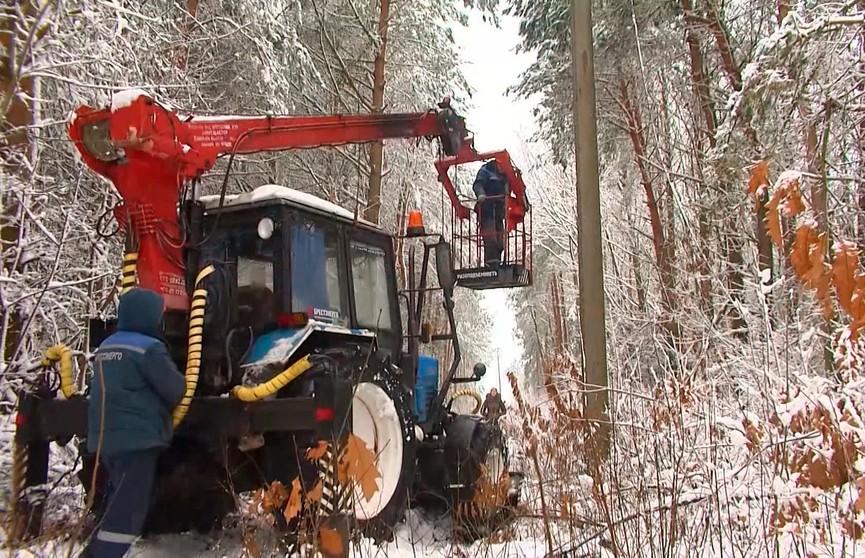 Сильные снегопады в Беларуси: почему не выдерживают энергосети и как справляются коммунальные службы?