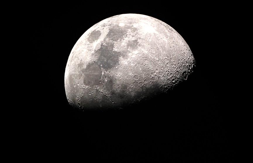 Лунный календарь с 2 по 8 марта. Самые благоприятные дни для посадки вьющихся растений