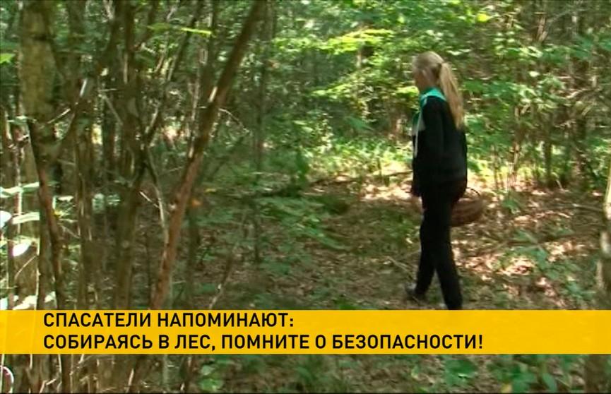Более 50 пропавших с начала 2019 года: МЧС рассказывает о том, как не заблудиться в лесу