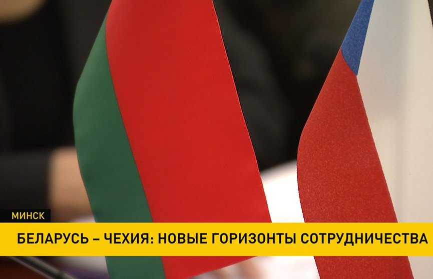 Парламентарии Беларуси и Чехии обсудили перспективы создания совместных производств
