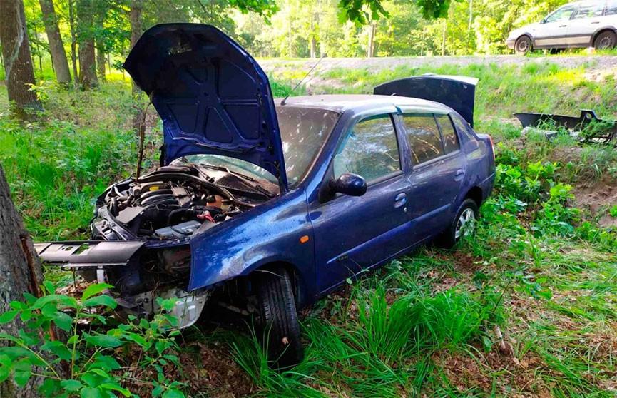 Женщина уснула за рулем и врезалась в дерево в Лельчицком районе